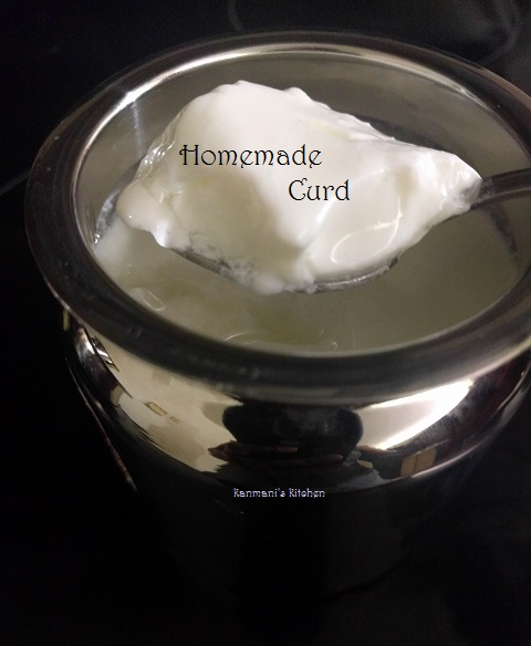 Homemade Curd