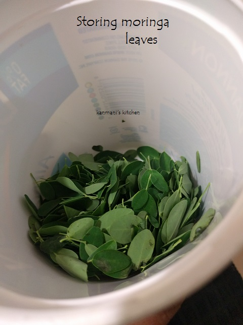 How to store the moringa leaves